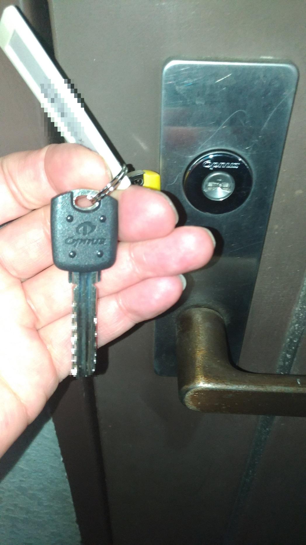 持ち手が黒いのが子鍵(住居キー)後ろの黄色いのがチェンジキーです。